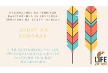 Заповядайте заедно да отбележим Деня на лешоядите в Маджарово