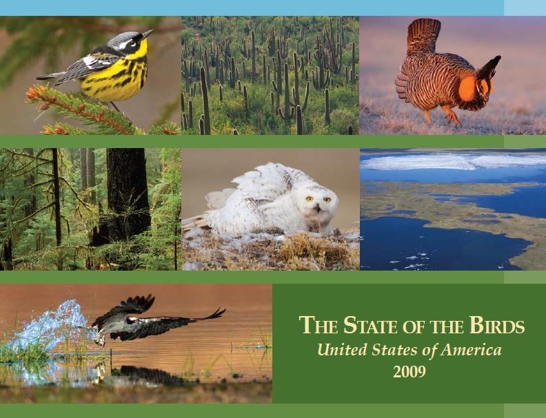 state_US_birds_2009.JPG