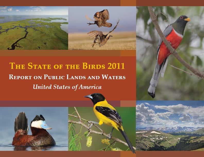 state_US_birds_2011.JPG