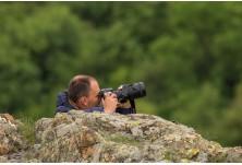 image: Iordan Hristov, www.NatureMonitoring.com