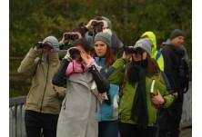 Полеви курс за разпознаване на птиците в природата 2018: Начало