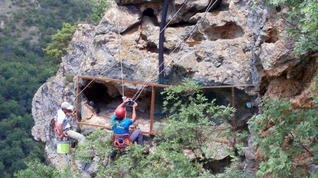 Скалите над Арда – бъдещ дом за млади египетски лешояди