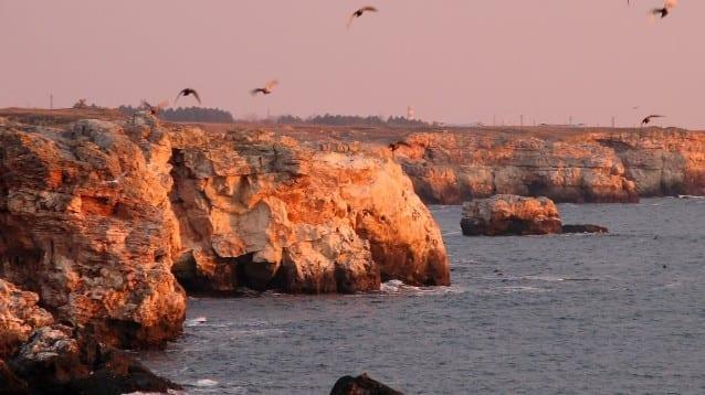 ЕК потвърди проблемите, за които природозащитната общност алармира от години