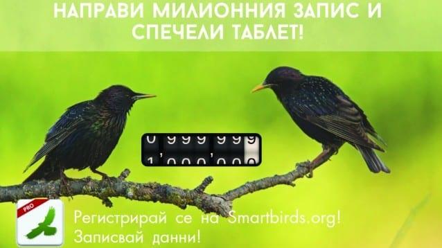 Направете милионния запис в SmartBirds Pro на БДЗП и спечелете таблет