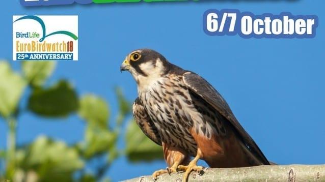 Европейски дни на птиците