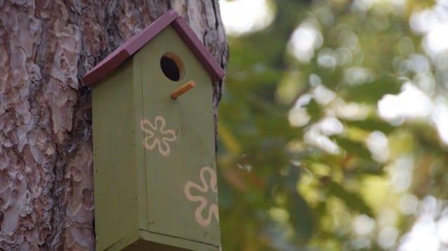 © Йорданка Луканова - Къщичка за птици