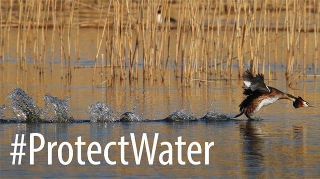 Интензивното селско стопанство унищожава питейната ни вода