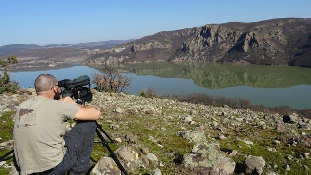 Повече двойки белоглави лешояди в Източните Родопи
