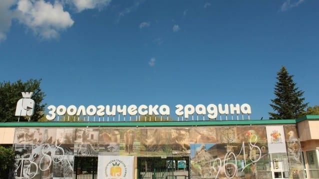Световен ден на мигриращите птици в Зоопарк София