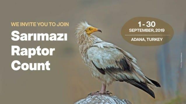 Преброяването на миграцията на хищни птици в Саримазъ, Турция, започна!