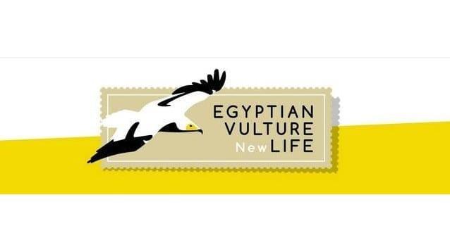 """Бюлетин №2 на проект """"Нова надежда за египетския лешояд"""""""