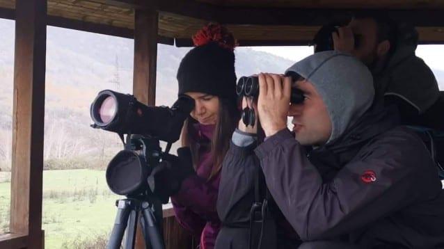 По-малко преброени белоглави лешояди в Източните Родопи заради лошото време