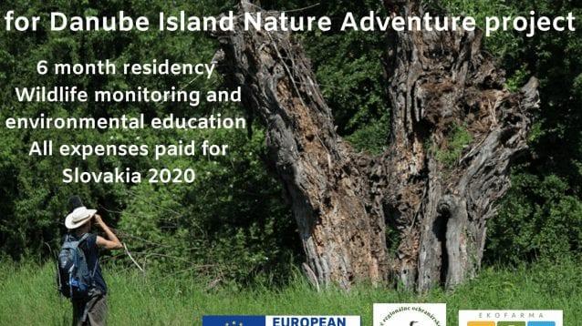 Шест месеца на остров на река Дунав и екоферма в Словакия