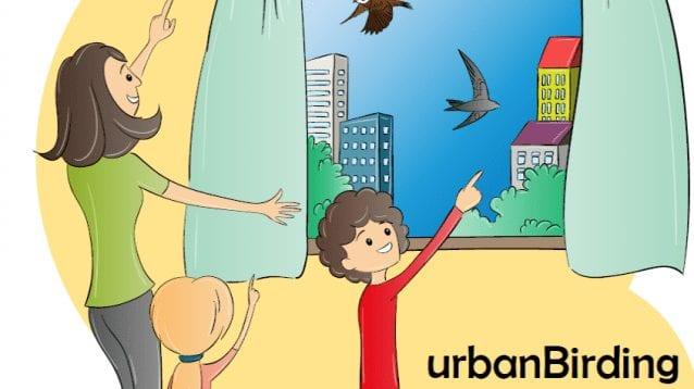 Наблюдавай птици от дома - urbanBirding
