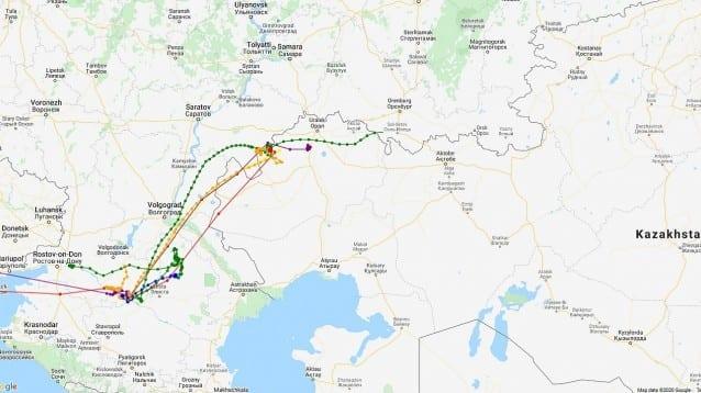 Червеногушите ни гъски вече са в Казахстан