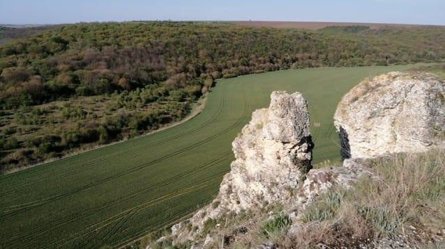 """Потвърдени са две нови гнезда на малък креслив орел в защитена зона """"Суха река"""""""