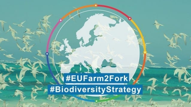План за спасяване на планетата: Eвропейската комисия със стратегия за биоразнообразието и селското стопанство