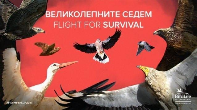 Великолепните седем - Flight for Survival
