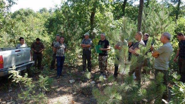 Нова природосъобразна лесовъдна практика в горите на Странджа