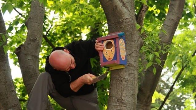 Направи си сам - къщичка за птици