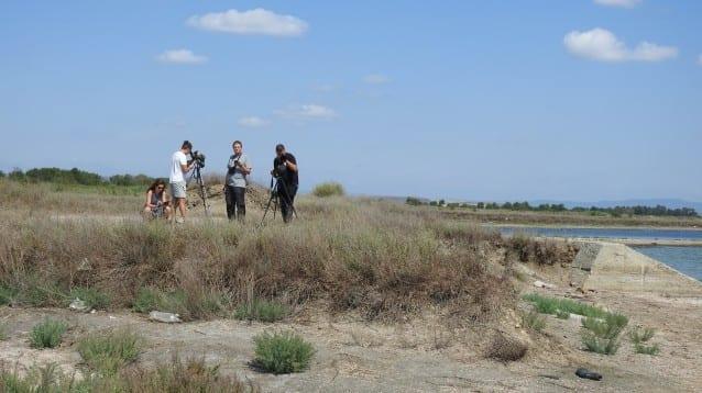 Доброволци се включиха в дейностите по опазване на къдроглавия пеликан