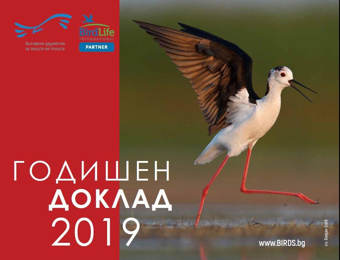 Годишен доклад 2019