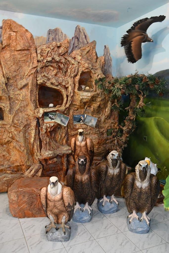"""Природозащитен център """"Източни Родопи"""""""
