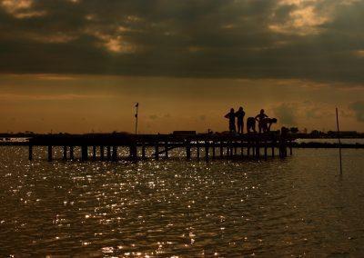 """БДЗП организира природозащитния лагер """"Атанасовско езеро"""" за 32-ри път"""